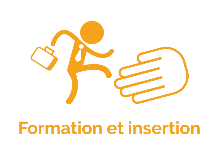 Formation et insertion