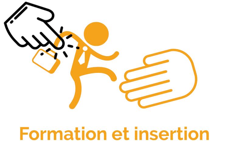Formation et insertion